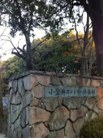 20121220-080535.jpg
